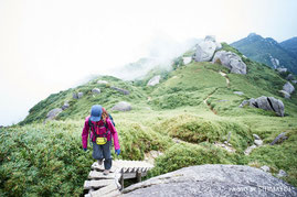 栗生岳から最後の急登の先に。,宮之浦岳日帰りツアー,屋久島