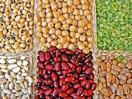 Légumes secs du GIE de chassagne par l'Earl J'y Crois