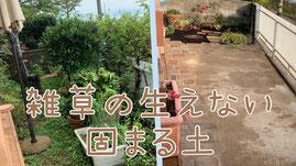 雑草 雑草対策 草抜き 草引き お庭の雑草 雑草の生えない固まる土 雑草ストレス 広島 外構 雑草の生えない土