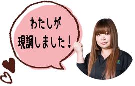 愛知 春日井 国道 車の騒音 プラスト