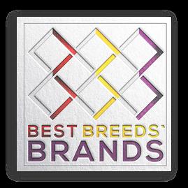 naming order; luxury best lux creative elegant naming order