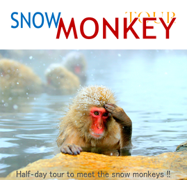 SNOW MONKEY TOUR
