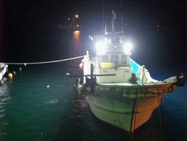 フルLED集魚灯小型漁船 (約800w)