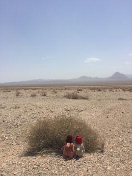 Die Wüstenprinzen