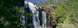 McKenzie Waterfall