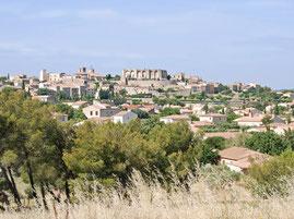 Ramonage à Lançon de Provence et aix en provence