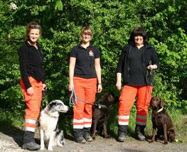 Von links nach rechts: Doro mit Cadeau, Steffi mit Acon und Sonja mit Rosa