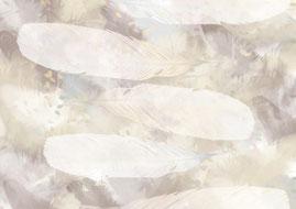 Ravienne Art Model - Homepage, Hintergrund, Rabenfedern