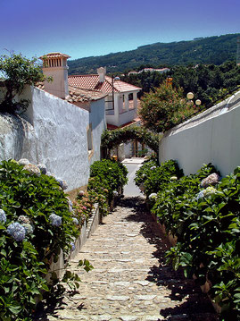 Op doorreis via de N266 kwamen we langs (één van de vele pittoreske dorpjes) Monchique in het prachtige groene binnenland van de Algarve.