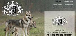 Japan Akita, Hund, Zucht, Hundezucht, Japan Akita e.V., Sebastian Gruner, Tschechoslowakische Wolfshunde, TWH, Wolfshunde Himbergen