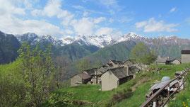 Alpe Capraga m. 951