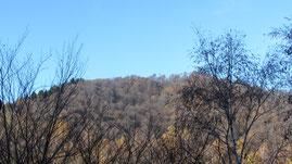 Il monte Briasco m. 1185