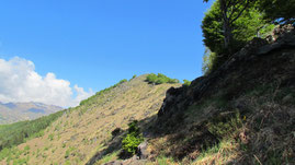 Il monte Mazzuccone m. 1424