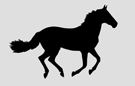 Grafik eigene Renn-Pferd im Verein
