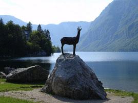 lac en slovénie