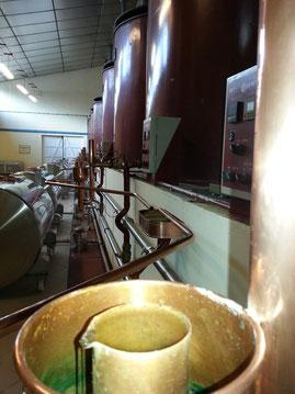 La distillation du Cognac, les têtes première optimisation !