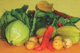 Elementi della nutrizione umana