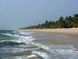 Der Strand vor dem Abad Turtle Beach Resort - direkt am feinsandigen Marari Beach