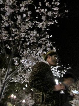 べーやんwith桜