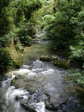 in der Nähe der Aranui Cave