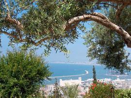 Haifa Monte Carmelo