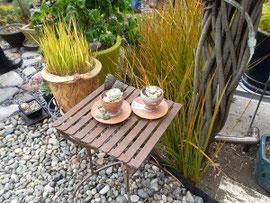 川石を敷き詰めた菜園