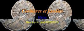 Corbiêres et fossiles