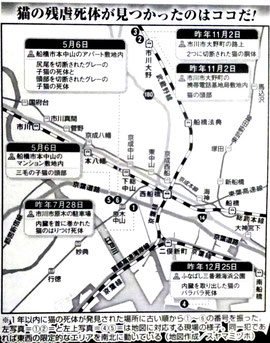 千葉 船橋 市川 猫の残虐死体が見つかったのはココだ!