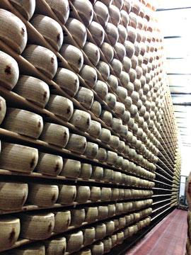 Parmesan im Reifekeller in Italien - Foto von Käse-Ober Grafing