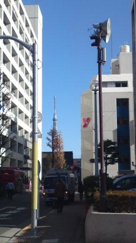 台東区役所と彩美堂の間にスカイツリーが見えます
