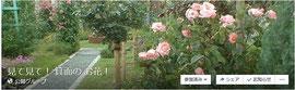 facebookグループ「見て見て! 箕面のお花!」