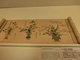 大住院以信の生けた花の絵図