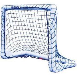 Petit but, idéal pour les enfants qui pratiquent le hockey ou autres sports pas cher.