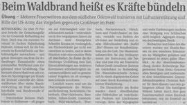 Zeitungsbericht Odenwälder Echo zur Waldbrandübung