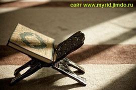 сайт www.myrid.jimdo.com