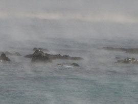 寒い冬の海の「けあらし」