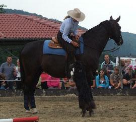 e-motion-pferd TOUR 2012 in Hahausen