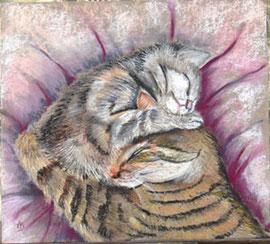 Trop mimi - pastel Anny Bergerolle
