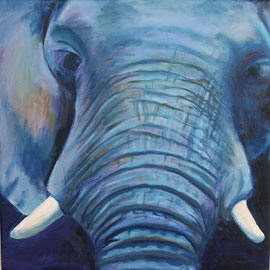 Elefant 50x50 v