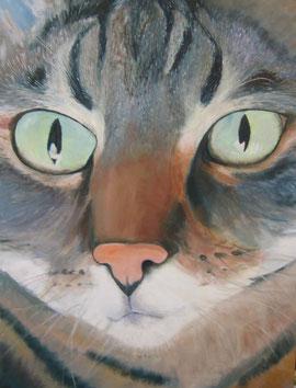 Miau 54x73