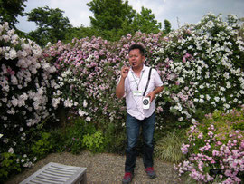 河合伸志氏 (Mr.takashi KAWAI), guiding the rose garden ' Wheel Tracks of Roses' designed by himself, Kana Garden, 3 June, 2012