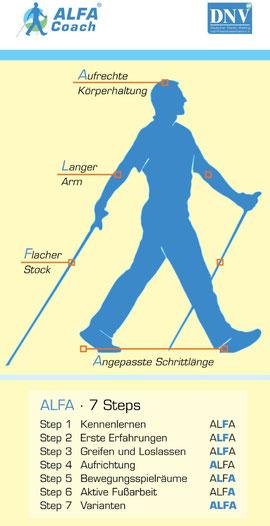 Bewegungsmerkmale & 7 Steps
