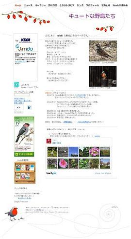 キュートな野鳥たち