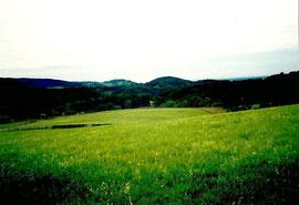 Bensheim Auerbach Fürstenlager