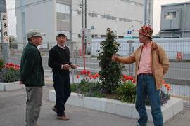 いわき市小名浜港の海産物店前花壇を視察