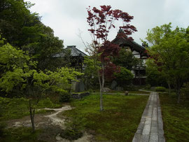 とても広くて美しいお庭です。随所に山野草が植えられていました。