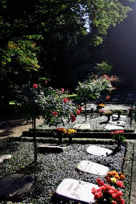 Friedhof Ohlsdorf, Hamburg: Rosenhain