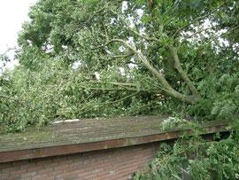 Versicherungsschaden Sturm