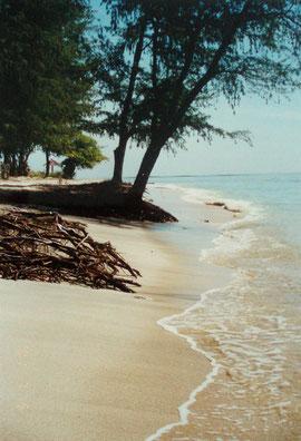.... unser Strand ....