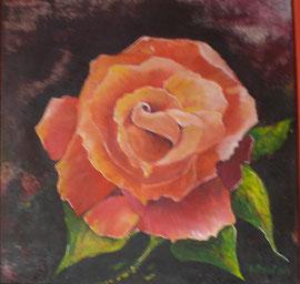 Rose-Acryl 50x50